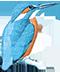 Beelen Dakbedekkingen Logo